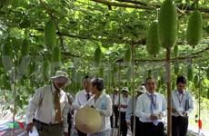 Economie verte pour le développement durable