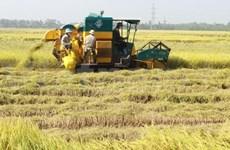 ASEAN: une nouvelle vision sur les aliments, l'agriculture et la sylviculture