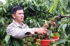 Singapour-Vietnam: commerce bilatéral en hausse