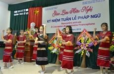 La fête de la Francophonie à Nghê An