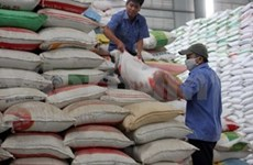 Exportation du riz: Il faut une stratégie à long terme