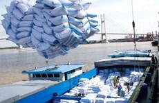 Vietnam-Afrique : des potentiels de coopération économique élevés