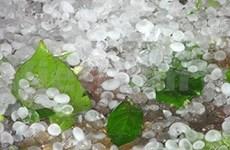 Météo : gros orages de grêle et grave sécheresse