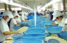 La filière de la noix de cajou veut rassurer sur le marché