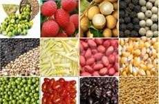 Diversifier les débouchés des produits agricoles