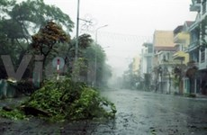 Le typhon Rammasun débarque à Quang Ninh