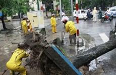 Le typhon Rammasun tue quatre personnes dans le Nord
