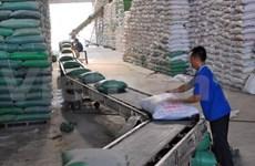 Riz : hausse des prix dans le delta du Mékong