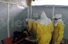 Hanoi renforce la prévention des risques face au virus Ebola