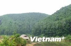 Soutien allemand pour la gestion durable des forêts au Vietnam