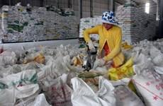 Le Sri Lanka veut importer 15.000 tonnes de riz vietnamien