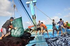 Le gouvernement épaule les pêcheurs au large