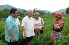 Le chef du Parti en visite de travail à Tuyên Quang