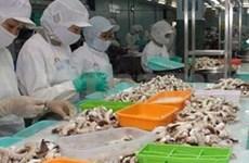 Le Vietnam, 8e fournisseur de céphalopodes en France