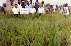 Coopération Vietnam-Sénégal, une initiative exemplaire
