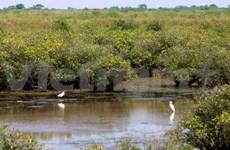 Dialogue national sur le Fonds pour l'environnement mondial au Vietnam