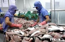 Le Vietnam ne pratique pas de dumping sur ses pangas