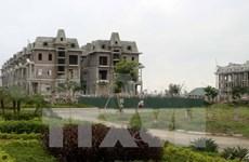 La relance du marché immobilier se confirmera en 2015