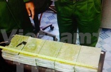 Découverte de 19,8 kg de drogue à Quang Ninh
