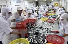 L'aquaculture table sur 8 milliards de dollars d'exportations en 2015