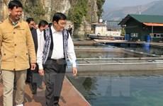 Le président du Vietnam en visite de travail à Hoa Binh et Son La