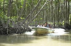 Hô Chi Minh-Ville entend développer le tourisme fluvial en 2015