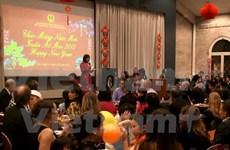 Les Vietnamiens à l'étranger célèbrent le Nouvel An lunaire