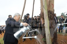 Le chef du PCV assiste à la fête de plantation d'arbres