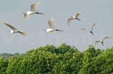 Préservation de la biodiversité au parc national de Tram Chim