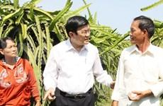 Visite de travail du président Truong Tan Sang à Binh Thuan
