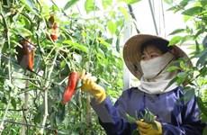 Soutien suisse à un projet d'amélioration des services publics à Hoa Binh