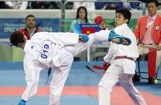 Karaté: le Vietnam brille aux Championnats d'Asie du Sud-Est