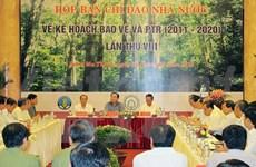 Plus d'efforts dans la restructuration du secteur forestier