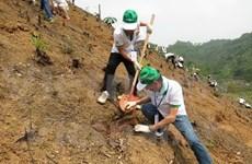 Honda Vietnam finance un projet de boisement à Bac Kan