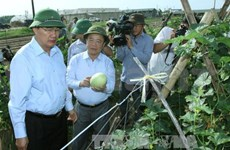 Nguyen Thien Nhan rend visite à des coopératives à Ha Tinh