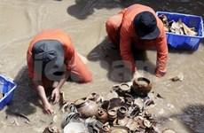 Préserver et valoriser le patrimoine maritime