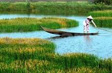 Le Nam Bo Oriental s'efforce de stimuler son tourisme