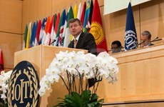 Le Vietnam à la 104e session de la Conférence internationale du Travail