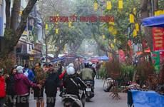 Le marché aux fleurs de Hang Luoc, une destination incontournable des Hanoïens à l'occasion du Têt