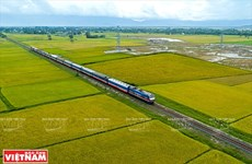 La ligne ferroviaire à grande vitesse Ho Chi Minh-Ville - Can Tho à l'étude