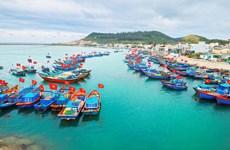 Lutte contre la pêche INN : Tien Giang vise un développement durable de la pêche