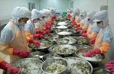 Exportations de crevettes: profiter des opportunités pour prendre l'essor en 2021