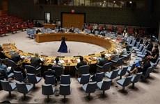 ONU : l'application de la technologie aux opérations de maintien de la paix doit être sûre