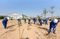 Edification d'une base de données sur les arbres à l'échelle nationale