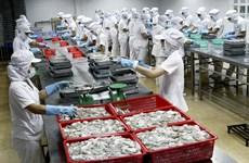 Soc Trang : les exportations en hausse de près de 26% au premier semestre