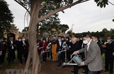 Fête de plantation d'arbres lancée à Hanoï