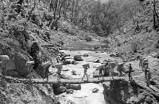 La piste de Truong Son, symbole de l'héroïsme révolutionnaire vietnamien au XXe siècle