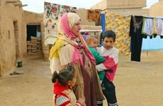 Le Conseil de sécurité de l'ONU s'inquiète de la situation humanitaire en Syrie