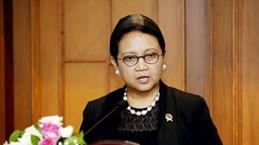 L'Indonésie renforce la coopération économique avec le Nigeria