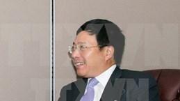 Renforcement de la coopération Vietnam-Cameroun